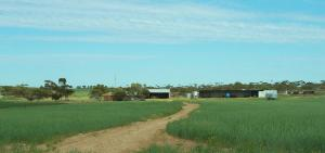 Farm For Sale Maggea South Australia