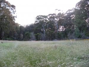 Acreage For Sale Tumbarumba New South Wales